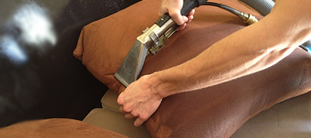 Upholstery Professional Cleaning